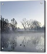 Mountain And Trees Reflected In A Foggy Lake Acrylic Print