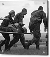 Multinational Medical Personnel Race Acrylic Print