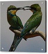 Nature's Heart Acrylic Print