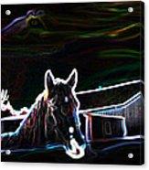 Neon Horse Acrylic Print