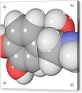 Norepinephrine Neurotransmitter Molecule Acrylic Print