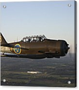 North American T-6 Texan Trainer Acrylic Print