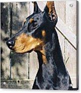 On Guard Acrylic Print by Rita Kay Adams