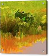 Palette Of Nature Acrylic Print