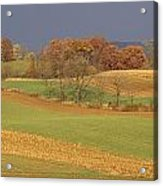 Pastoral View Of Rolling Fields Acrylic Print