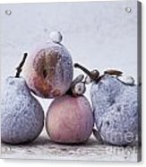 Pears And Apples Acrylic Print