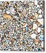 Pebbles Acrylic Print by Tom Gowanlock