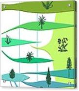 Plant Evolution, Diagram Acrylic Print by Gary Hincks