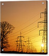 Pylons And Power Lines At Sunset Acrylic Print