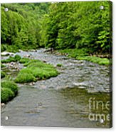 Rainy Day On Williams River Acrylic Print