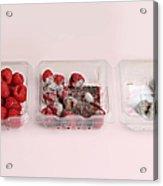 Raspberries Growing Mold Acrylic Print