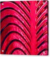 Red Ribs Acrylic Print