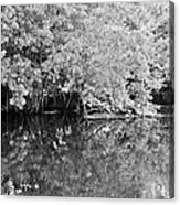 Reflections On The North Fork River In Black And White Acrylic Print