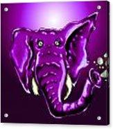 Ringo Party Animal Purple Acrylic Print