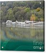 River With Trees Acrylic Print