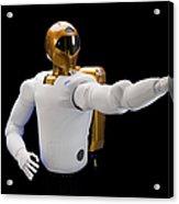 Robonaut 2, A Dexterous, Humanoid Acrylic Print
