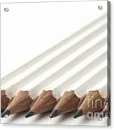 Row Of White Pencils Acrylic Print