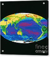 Satellite Image Of The Earths Biosphere Acrylic Print