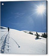 Scott Cooper Backcountry Skiing Acrylic Print