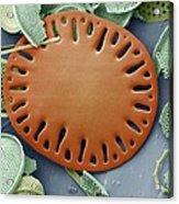 Sea Cucumber Plate Acrylic Print by Steve Gschmeissner