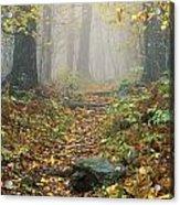 Shenandoah National Park In Virginia Acrylic Print
