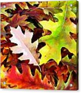 Simple Background From Autumn Leaves Acrylic Print