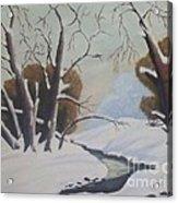 Snow Acrylic Print by Debra Piro