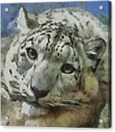 Snow Leopard Painterly Acrylic Print