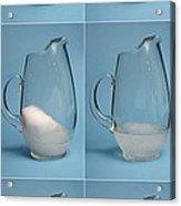 Snow Melting Acrylic Print by Ted Kinsman