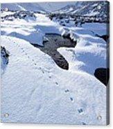 Snowy Landscape, Scotland Acrylic Print