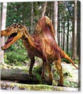 Spinosaurus Dinosaur Acrylic Print