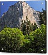 Spring Views Of El Capitan Acrylic Print