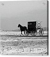 Stark Winter Buggy Acrylic Print