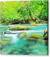 Stream Acrylic Print