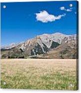 Summer Landscape Blue Sky  Acrylic Print