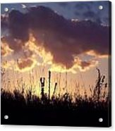 Summer Sunset Acrylic Print