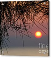 Sunset In Zanzibar Acrylic Print by Alan Clifford