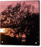 Sunset Acrylic Print by Saifon Anaya