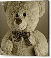 Teddy Bear Acrylic Print by Blink Images