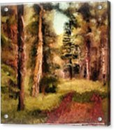 The End Of The Road Acrylic Print