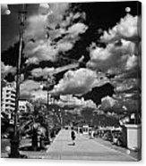 The Palm Tree Promenade Finikoudes On Larnaca Seafront Larnaka Republic Of Cyprus Europe Acrylic Print