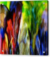 The Parrot Acrylic Print