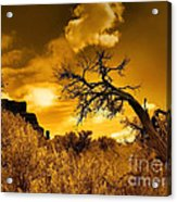 The Weight Of The Clouds In Sepia Acrylic Print