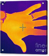 Thermogram Of A Hand Acrylic Print by Ted Kinsman