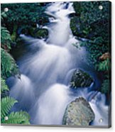 Time Lapse Of Taggerty River Flow Acrylic Print