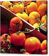 Tomatoes On The Market Acrylic Print by Elena Elisseeva