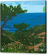 Torrey Pines Trails Acrylic Print