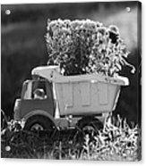 Toy Truck Planter Acrylic Print