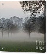Trees And Fog Acrylic Print