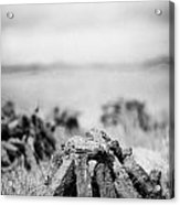 Turf Peat Stacked For Drying On The Bog In Ireland Acrylic Print